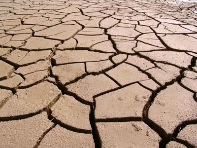 Non reconnaissance de l'état de catastrophe naturelle pour phénomène de sécheresse 2020